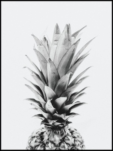 Plakat pineapple dream