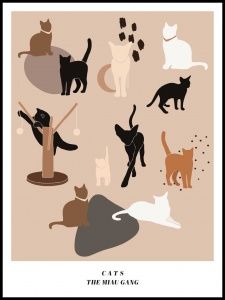 Plakat cats 2-brown